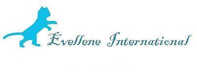 Evellene International