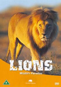 Lions (DVD, 2008)
