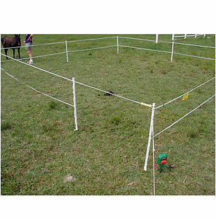 Electric Fence Battery Powered Electric Horse Fence