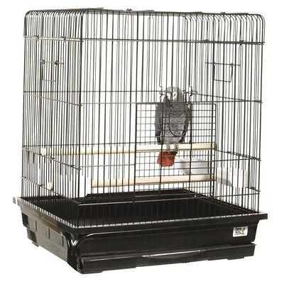 sitzstangen f r vogelk fige nat rliche ste als sitzgelegenheit ebay. Black Bedroom Furniture Sets. Home Design Ideas