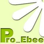 pro_ebee