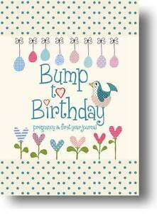 Bump-to-Birthday-Pregnancy-First-Year-Journal-by-Helen-Stephens-Lucy