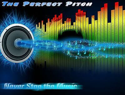 The Perfect Pitch 3501