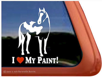 I LOVE MY PAINT! American Paint Pinto Horse Trailer Window Decal Sticker