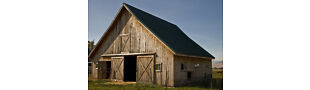 The Rustic Barn