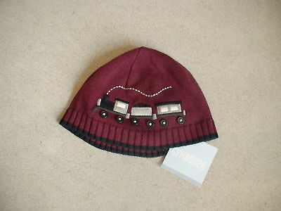 Gymboree Train Time Choo Choo Sweater Knit Hat Cap