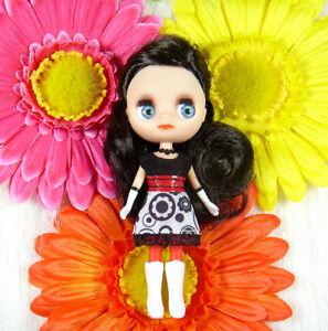 Littlest-Pet-Shop-LPS-Blythe-Loves-Doll-Girl-Toy-XH27