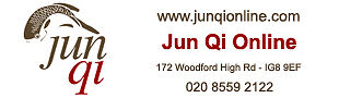 Jun Qi Online
