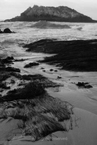 Beach of 17-Mile Drive - Black & White Photo Art Print
