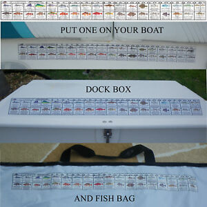 S carolina saltwater fish regulation ruler fish decal ebay for Fish ruler sticker