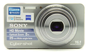 Sony-Cyber-shot-DSC-W570-16-1-MP-Digital-Camera-Silver-Free-Carrying-Case