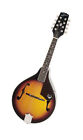 Epiphone Bluegrass MM-20  Mandolin
