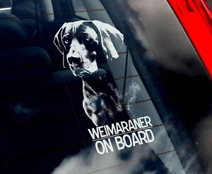 Weimaraner-Dog-Car-Sticker-Vorstehhund-Sign-n-Collar