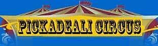 Pickadeali Circus