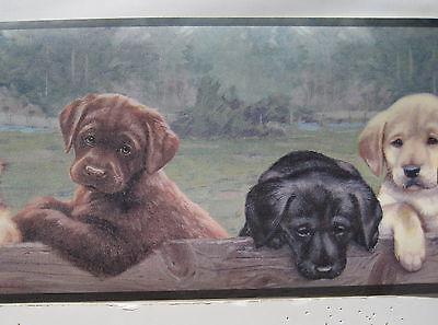 Labrador Retriever Puppies Dogs Wall Border 6 7/8