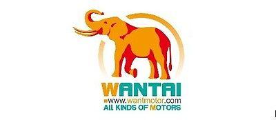 Changzhou Wantai Motor Co Ltd