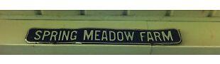 Spring Meadow LLC