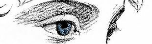 The Eye Supply