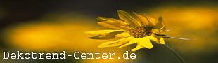 DekoTrend-Center