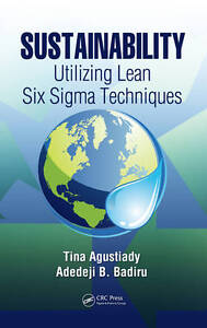 Sustainability: Utilizing Lean Six Sigma Techniques (Systems Innovation Book Ser