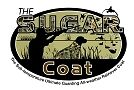 The Sugar Coat Store