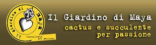 Il Giardino di Maya Cactus