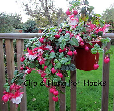Clip&Hang Pot Hooks
