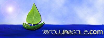 Growingsale