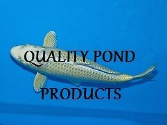 Quality Pond products