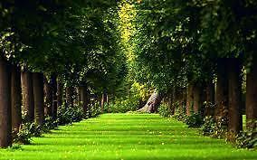 forestland2012