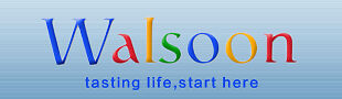 Walsoon Technology Company Ltd