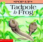 Tadpole to Frog Pop-Up, Elizabeth B. Rodger, 0590543466