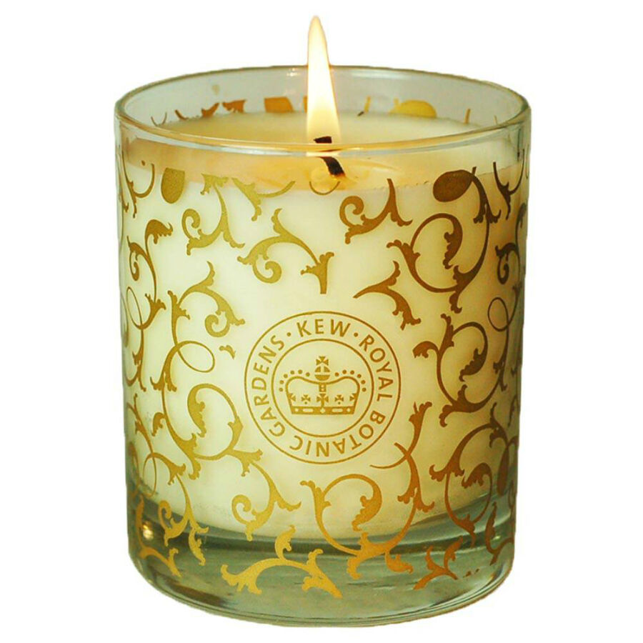 Container candle buying guide ebay - A buying guide for decorative candles ...