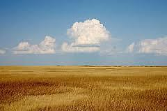 Prairie Wind Deals