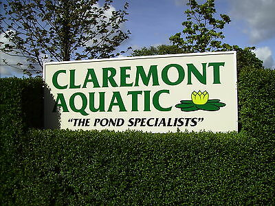 claremontaquaticleyland