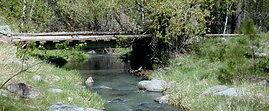 Otter-Creek