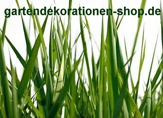 gartendekorationen-shop