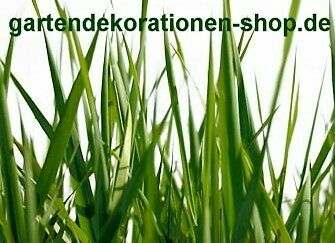 gartendekorationen-shop
