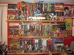 the big collectors store