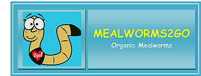 Mealworms 2 GO