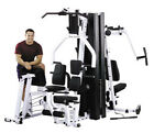 Pectoral Deck Strength Training Home Gyms