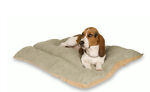 What to Look For When Buying a Dog Bed