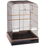 The Complete Guide to Buying a Bird Cage on eBay