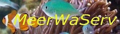 meerwaserv