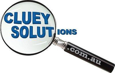 ClueySolutions