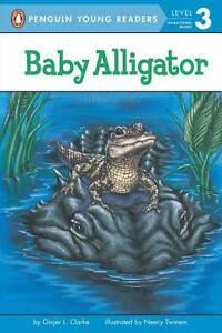 Baby Alligator by Ginjer L Clarke (Paperback, 2000)