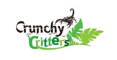 Crunchy Critters UK