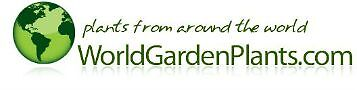 WorldGardenPlants