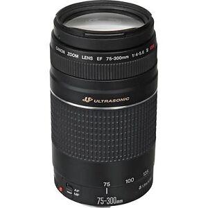 Canon EF 75-300 mm F/4-5.6 III USM Lens