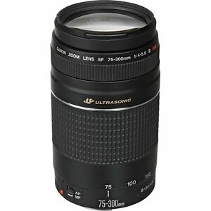 Canon Ef 75-300mm F4-5.6 Iii Usm Telephoto Zoom Lens For Canon Slr Cameras 4